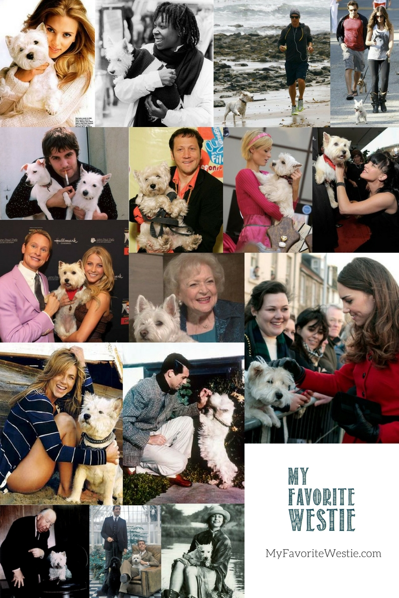 Even famous people love Westies! Can you name all of these celebrities?